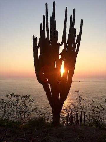suit frente al mar - Los Llanos  - Hus