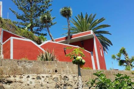 Mitwohnen für Nichtraucher - Puerto de la Cruz - Lejlighed