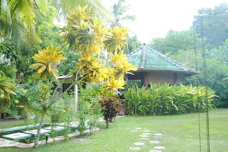 "Paradise Garden ""Gardenia"" standard - Unawatuna - Bed & Breakfast"