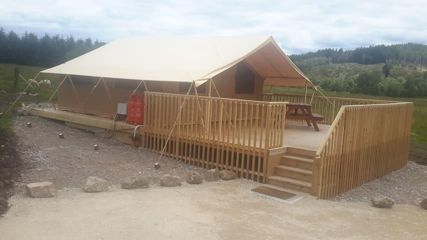 Glamping in the Safari Tent on Tulloch Farm