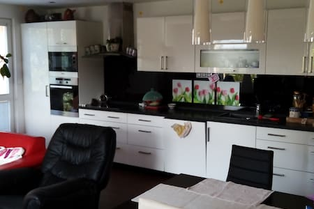 30 min from city centre, small house,FREE WIFI - Klecany - House