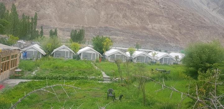 Buckwheat Root Camps - Turtuk (Ladakh)