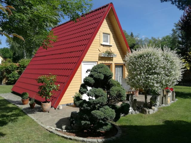Cozy hut/ A-frame house