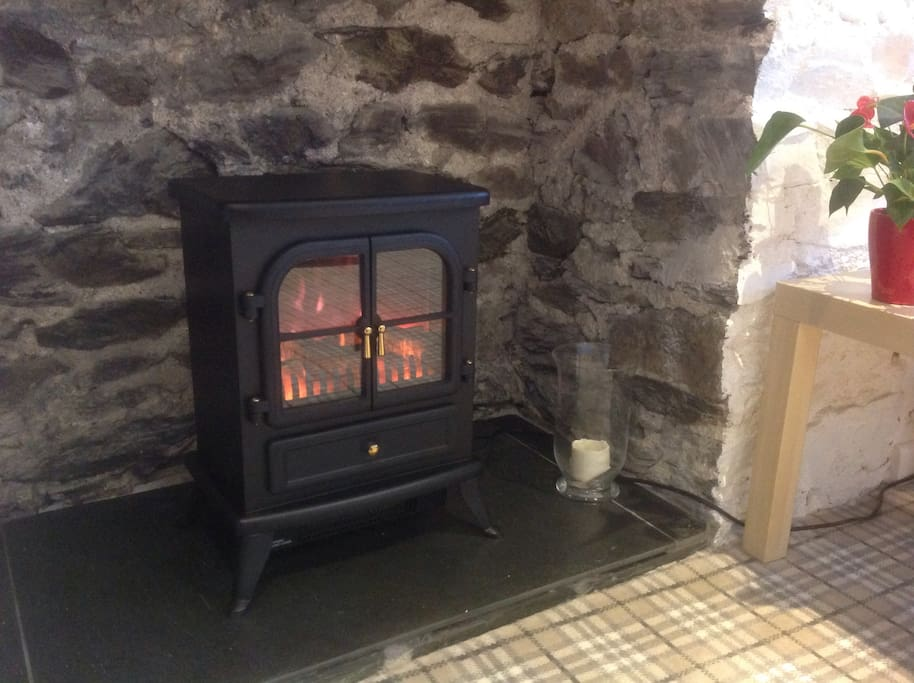 warming realistic flame electric stove fire.