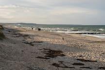 Der wunderschöne Ostseestrand (nur 400 Meter zu Fuß vom Hauseingang entfernte).