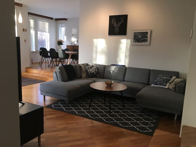 Spacious family house in quiet area