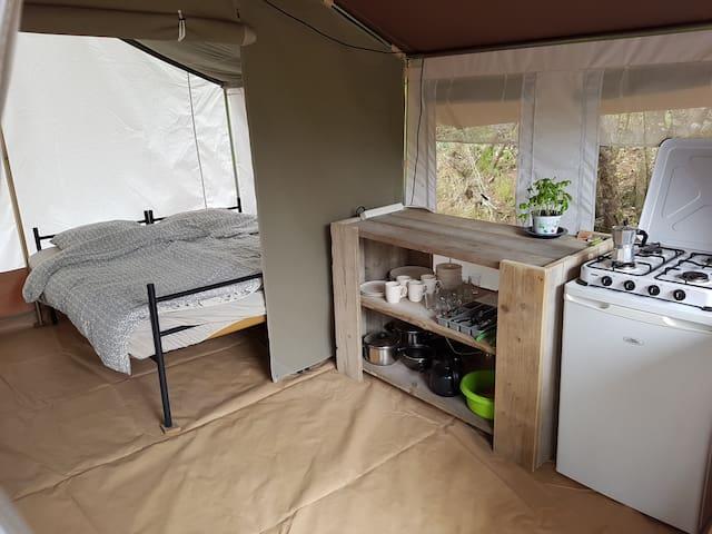 Safari Tent Lacona