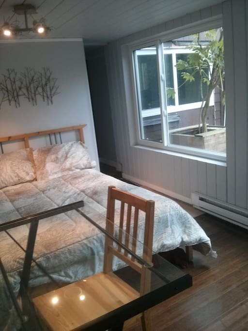 Double bed with two large windows (same wall for both)