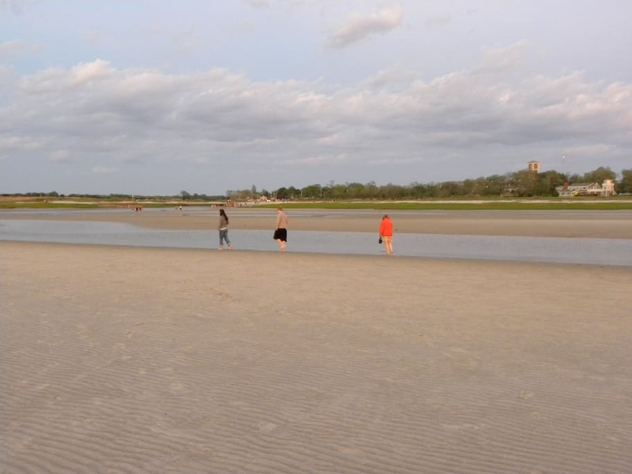 The low tide flats walks are a highlight of Rock Harbor beach!