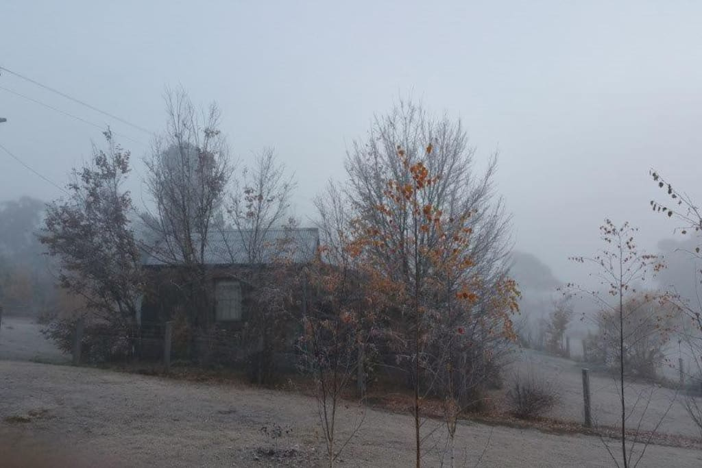 Cold Morning. Frosts and fog in Winter