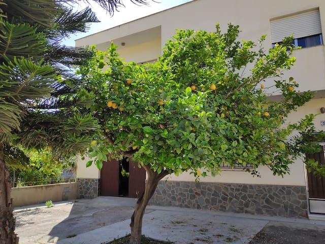 Casa rural Alpujarra Almeria