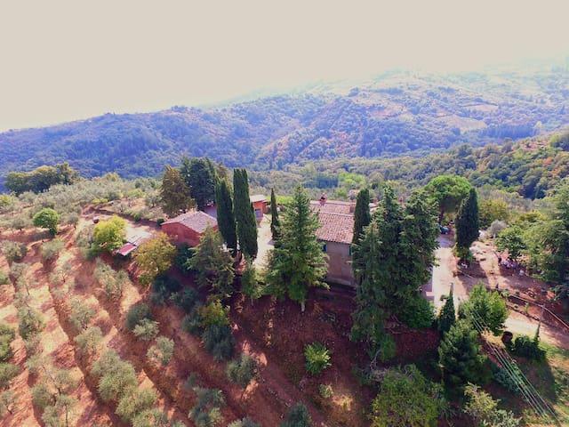 Camera Seneca Azienda Agricola Agrituristica - Montegonzi
