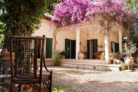Villa Felice a 2 minuti dal mare - Santa Severa - Huoneisto