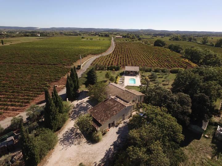 Superbe Mas viticole piscine et nature