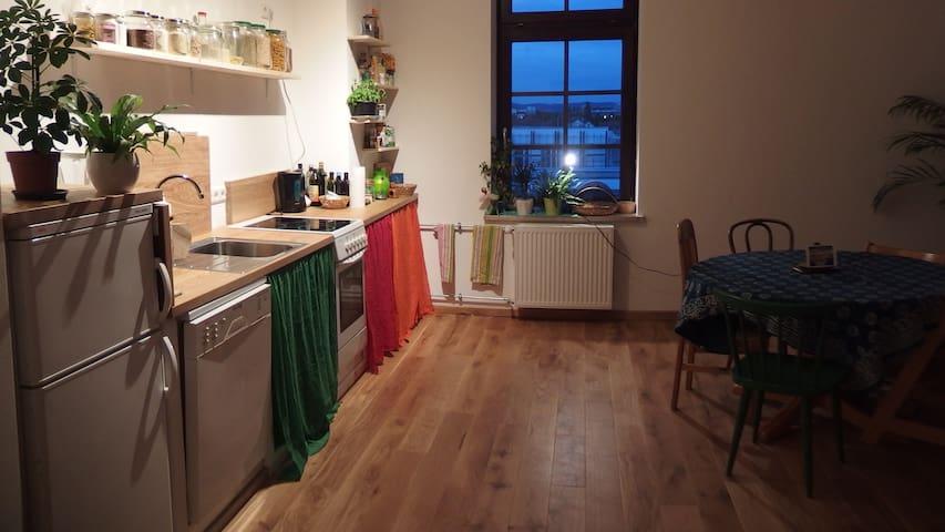 Schöne größe Wohnung - Mannheim