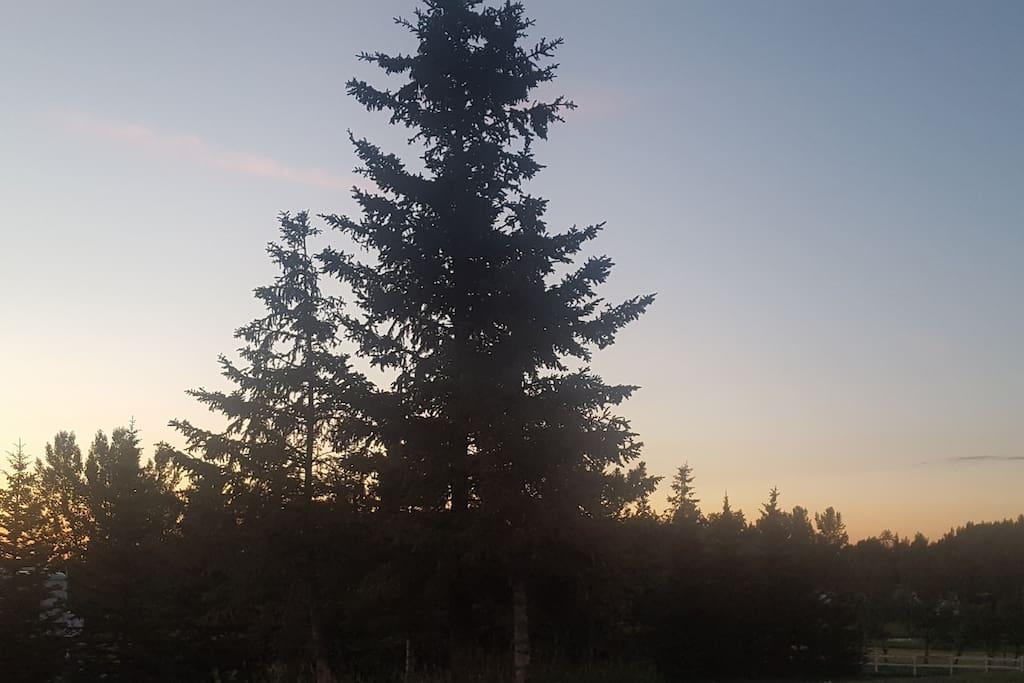 "SUNSET AT ""MY ACREAGE"""