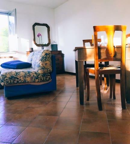Appartamento 1 - Salotto - Ampio spazio per ospitare cene o rilassarsi al fresco.