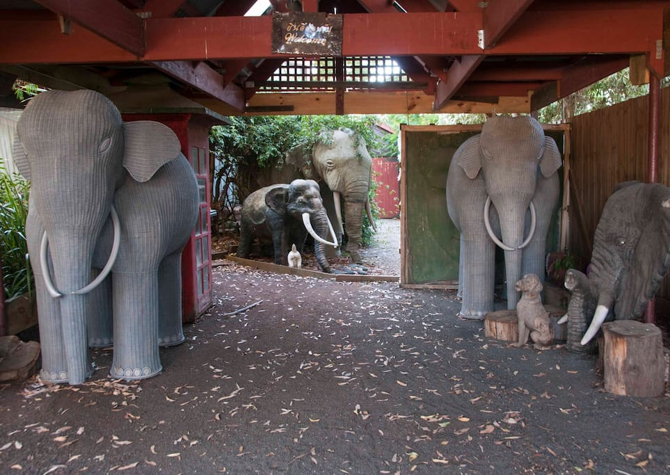 The elephant Guards