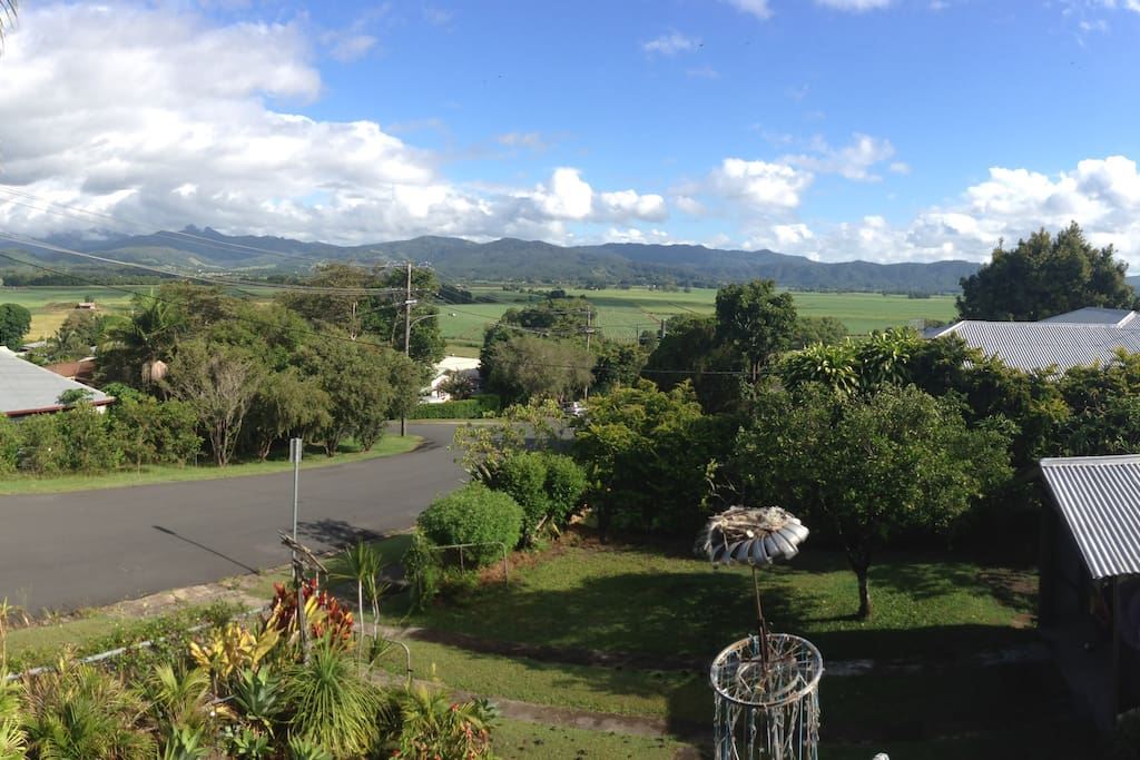 North views of the Border Ranges