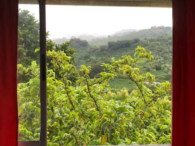 Casa Campo Montaña Cafetalera
