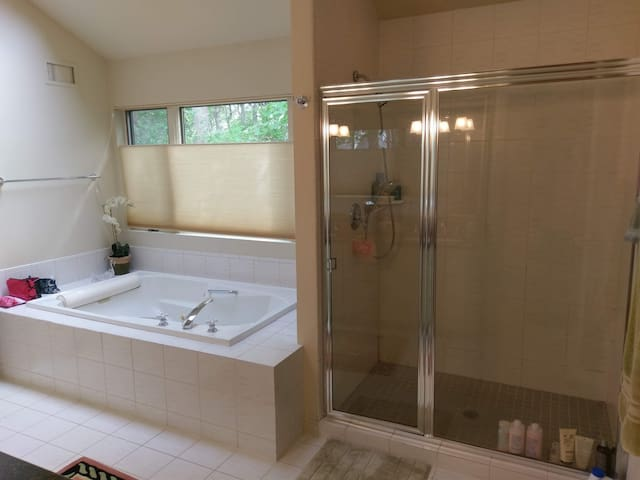 Master bath jacuzzi and stall shower