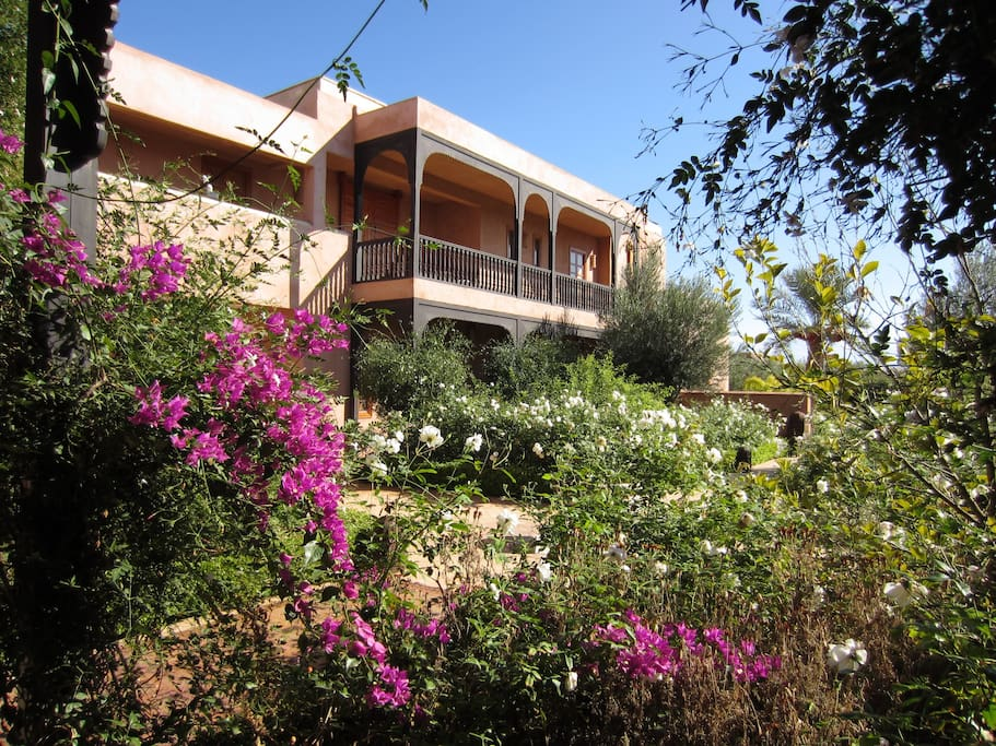Patio garden at Villa Warda in Marrakech
