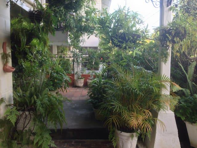 Kingston Garden Oasis: Paradise in the city!