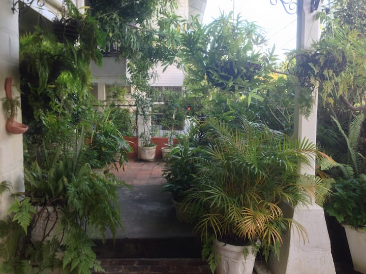 Kingston Garden Oasis: Paradise in the city!