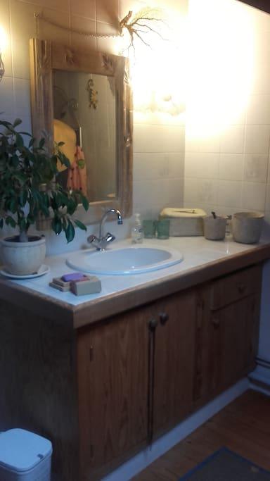 La salle de bain (douche et WC non visibles sur la photo mais bien présents)