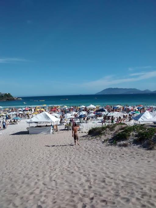 PRAIA DO FORTE BEACH Praia do Forte- Cabo Frio
