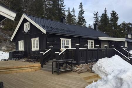 Stor hytte, 400 m fra alpinanlegg på Lifjell. - Bø
