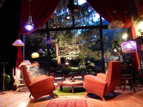 LOFT artistique 240 m2 sur jardin...
