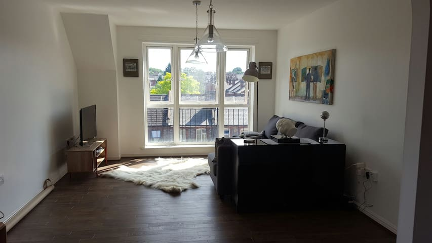 Double room in a cozy, artistic top floor flat. - Reading - Daire