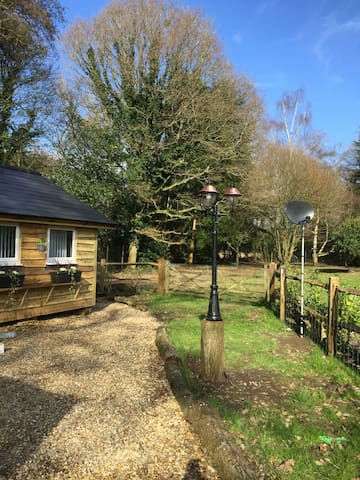 Beautiful boutique Cabin from £67-£90 night - Surrey - Cabin