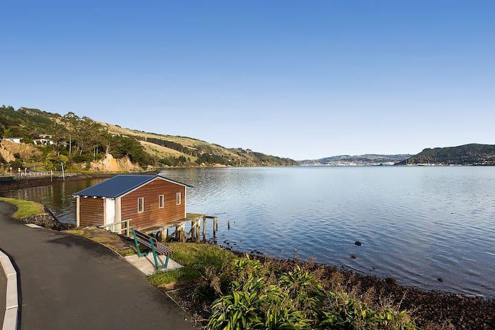 Spare Room, Otago Peninsula.