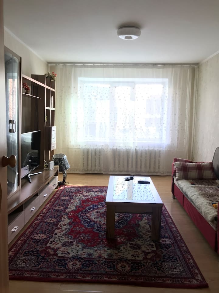 Cozy and spacious apartment close to the center