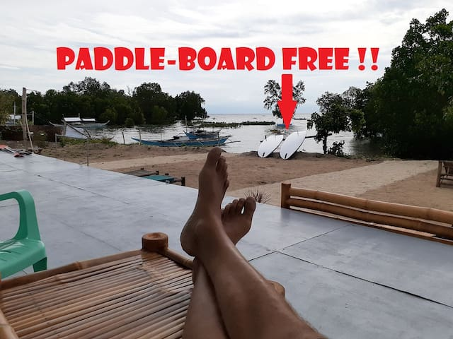 ROOM, Feet in the OCEAN! Paddle board FREE!