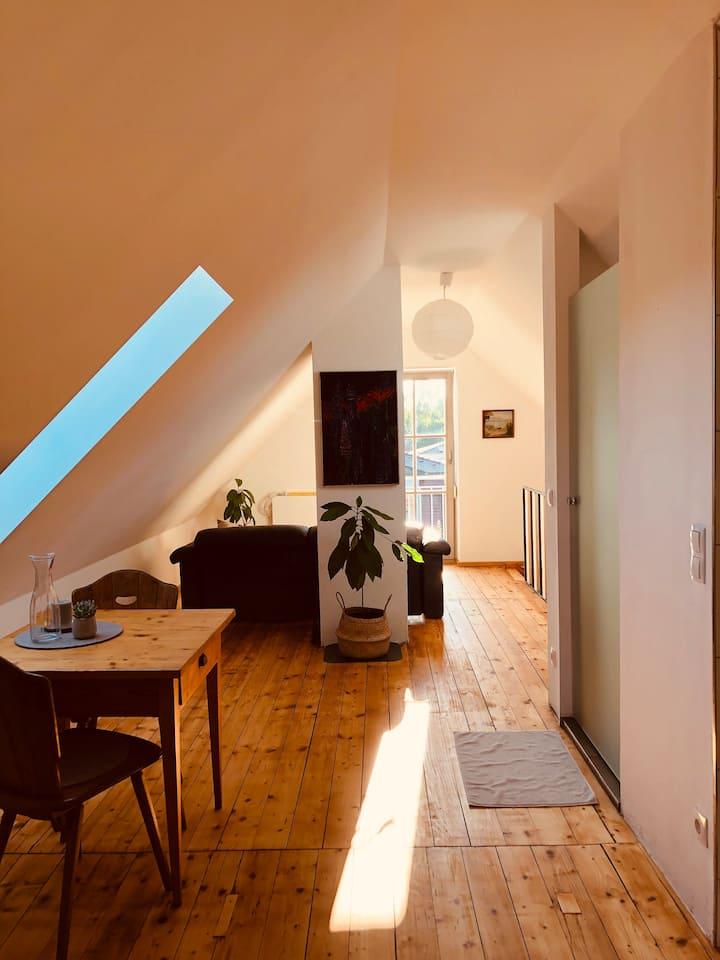 Freundliches Appartement im Dachgeschoss