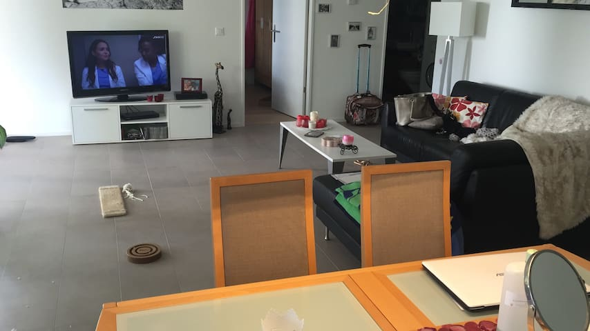 Gemütliches privates Apartment beim Stadion - Basel - Lägenhet