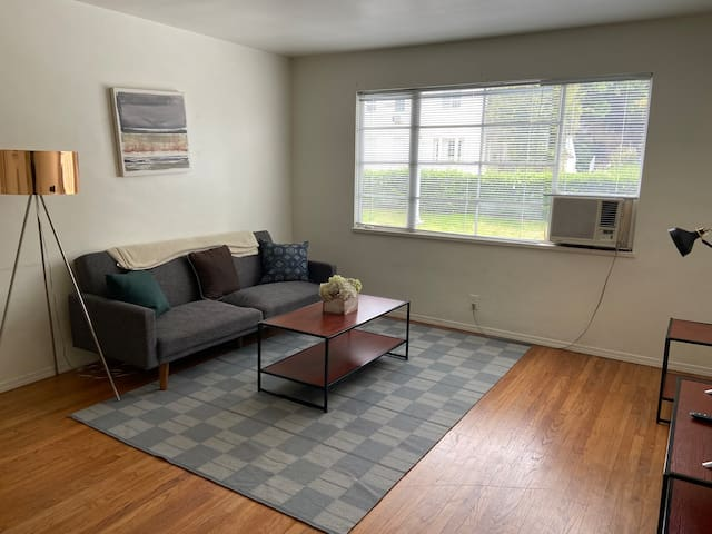 Spacious 1 bedroom apt really close to Runyon