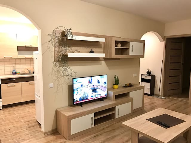 Central & cozy 2 rooms apartment - Klaipėda - Appartement