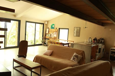 Grand loft dans mas Languedocien