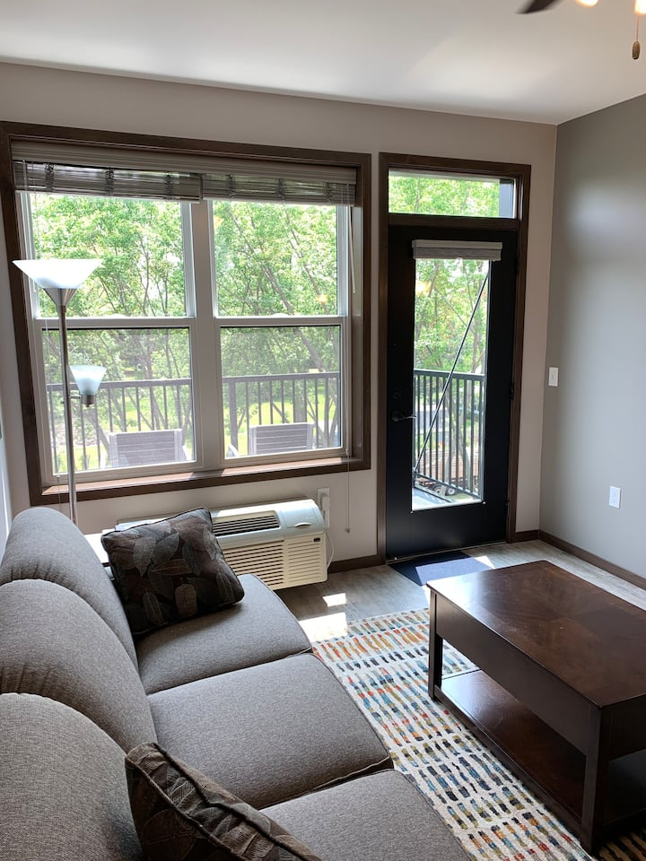 Beautiful apartment close to the Twin Cities
