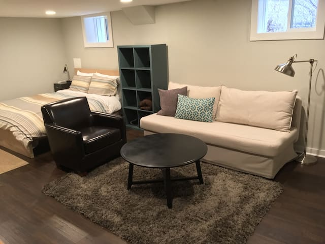 Newly Renovated Studio in City Park - Denver - Apartment