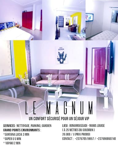 Appartement Meublé/ Furnished flat Douala LeMagnum