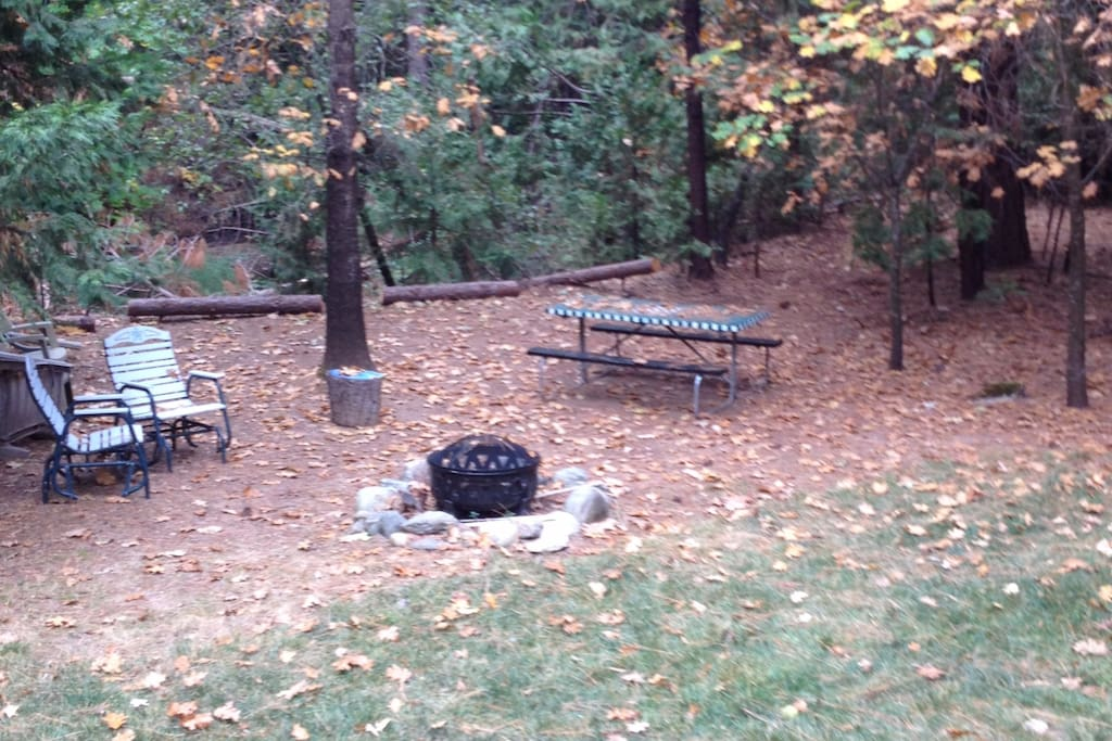 Backyard campfire area. Creek is just behind picnic table (about a 6 feet drop off to creek)