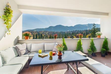 Fabulous Panorama Silver Mountain 3rooms apartment