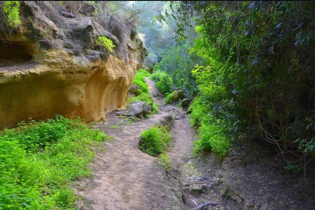 Ruta de senderismo Río Seco