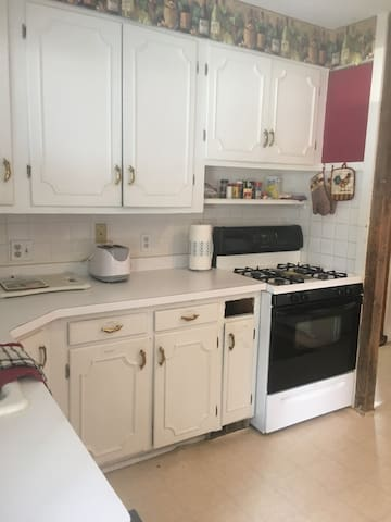 Family-friendly house 5 min from skiing; HOT TUB!! - Ellicottville - Hus