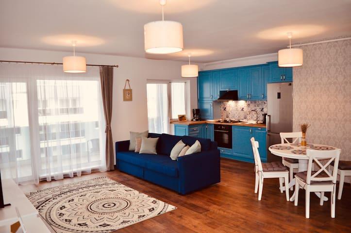 Europe Apartment - chic spacious home in Sibiu